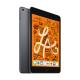 Comprar iPad Mini Space Gray Apple Donostia San Sebastian SICOS